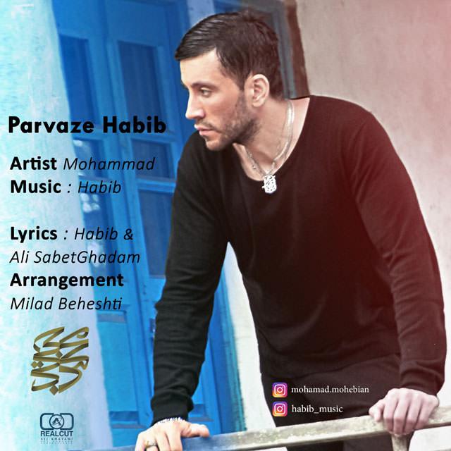 Mohammad Mohebian - Parvaze Habib