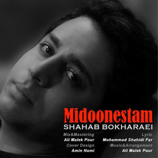 Shahab Bokharaei - Midoonestam