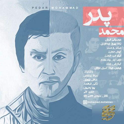 mohammad-mohebian-pedar-1