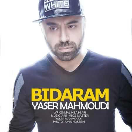 yaser-mahmoudi-bidaram
